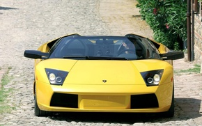 Picture Lamborghini, yellow, sport car, front view