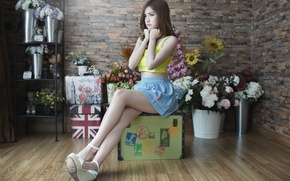 Picture face, mood, skirt, suitcase, legs, Asian
