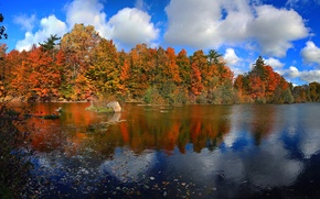 Picture paint, trees, leaves, lake, Ontario, clouds, the sky, Canada, autumn, forest