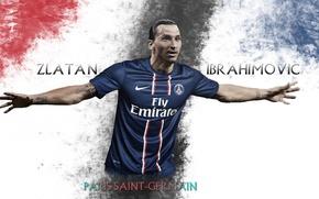 Picture wallpaper, sport, football, player, Paris Saint-Germain, Zlatan Ibrahimovic
