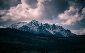Picture USA, United States, Wyoming, sky, trees, Mountain, clouds, snow, hills, Yellowstone National Park, America, Montana, …