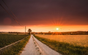 Wallpaper road, field, sunset