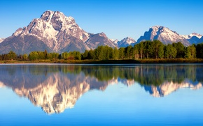 Picture forest, summer, reflection, nature, morning, USA, Wyoming, Grand Teton national Park, Mount Moran, lake Jackson