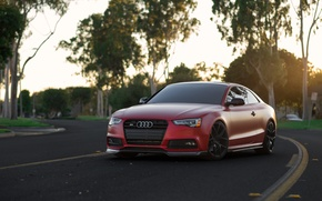 Picture Audi, Red, Matte, Build