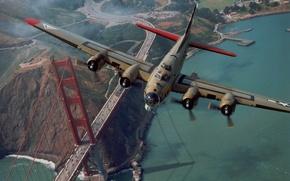 Wallpaper bridge, The plane, Golden gate