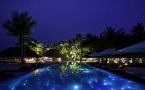 Picture night, tropics, pool, houses, the Maldives, pool, sunbeds, Palma.