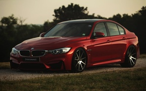 Picture RED, F80, BMW, z-performance