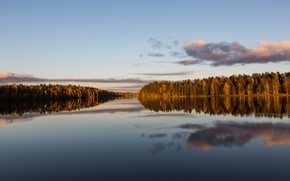 Picture autumn, forest, river, calm, the evening