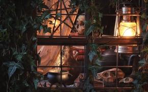 Picture window, lantern, skull, boiler, ivy