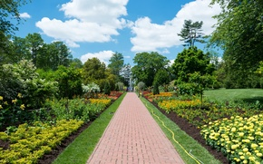 Picture greens, trees, flowers, Park, people, track, fountain, USA, the sidewalk, the bushes, beds, Longwood, Kennett ...