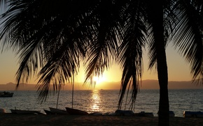 Picture palm trees, dawn, boats, early in the morning, sunrise on Lake Malawi