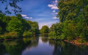 Picture summer, trees, river, Germany, Dortmund, Romberg Park