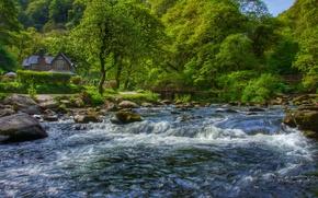 Picture forest, trees, house, river, England, Devon, England, Devon, Exmoor, East Lyn River, Watersmeet, Exmoor, Watersmeet