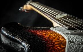 Picture drops, macro, music, guitar