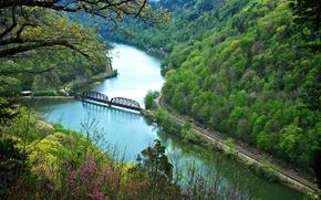 Picture autumn, forest, flowers, mountains, bridge, river, slope