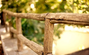 Picture greens, trees, the fence, fence, wooden, bokeh