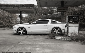 Picture machine, auto, Mustang, Ford, dressing, auto, Black, side, Matte, Face, Wheels, Concave, Machined, CW-5