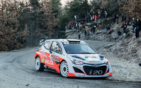 Picture rally, wrc, hyundai, i20, 2014
