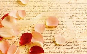 Picture letter, macro, rose, petals, tape, parchment, writing