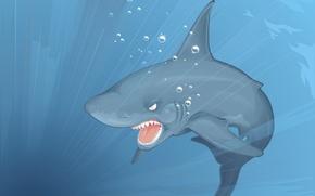 Picture vector, shark, Depth