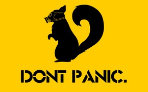 Picture gas mask, skunk, Do not panic