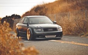 Picture autumn, gold, Audi, audi