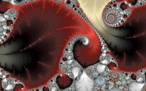 Picture leaves, line, pattern, petals, fractal
