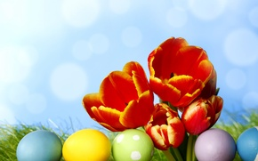Picture grass, flowers, eggs, spring, colorful, Easter, tulips, flowers, tulips, spring, painted, eggs, easter