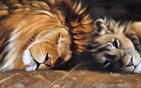 Wallpaper predators, mane, animals, picture, art, cats, Pollyanna Pickering, lioness, Leo, wild, sleep
