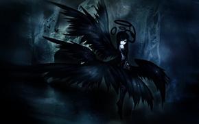 Picture girl, wings, angel, shiroganeusagi, Seraphim