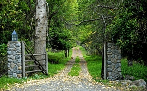 Picture Road, Forest, Gate