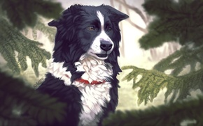 Picture trees, spruce, dog, art, collar, needles, Emma Jonsson