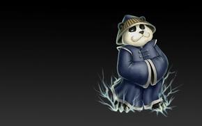 Picture the game, art, Panda, Dota, Storm Spirit