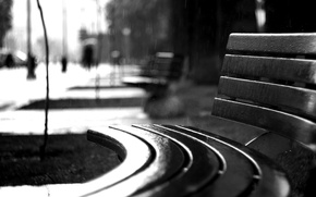 Picture The city, Rain, Bench
