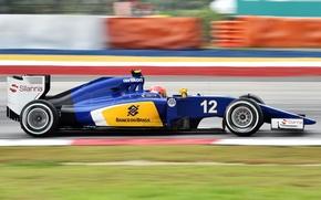 Picture Profile, Formula 1, Blur, Felipe Nasr, Sauber C34