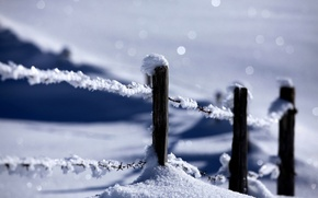 Picture winter, snow, nature, the fence, nature, winter, snow, fence
