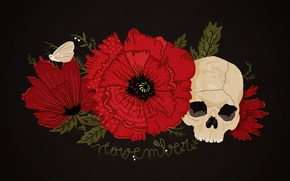 Picture flower, red, black, Mac, skull, moth, happynes, November, november