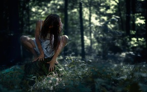 Picture forest, girl, stump, horror, halloween, forest, dark, creepy