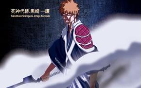 Picture wallpaper, sword, game, Bleach, anime, katana, man, ken, blade, bankai, hero, asian, Kurosaki Ichigo, manga, …