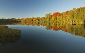 Picture autumn, forest, the sky, sunset, lake