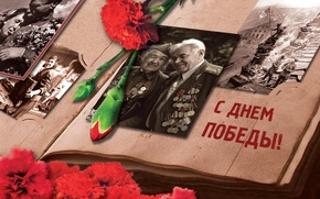 Picture flowers, photo, May 9, album, victory day