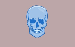 Picture blue, skull, minimalism, head, skeleton, light background