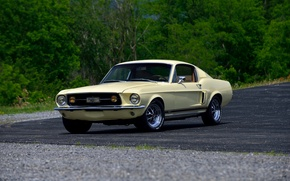 Picture Mustang, Ford, Mustang, Ford, 1967, Fastback