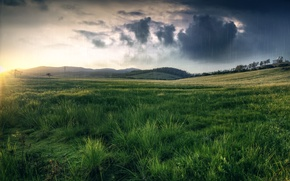 Picture field, grass, clouds, nature, rain, hills, meadow