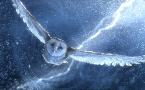 Wallpaper Owl, the storm, flight, Legend of the guardians
