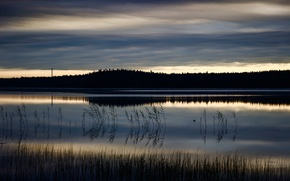 Picture forest, water, nature, lake, Clouds