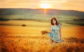 Picture field, girl, the sun, dress, legs