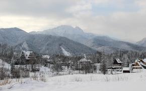 Picture winter, landscape, nature, the city, Poland, forest, Poland, Zakopane, Zakopane