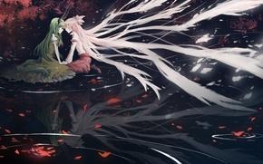 Picture leaves, water, night, horns, long hair, the reflection in the water, kamishirasawa keine, fujiwara no …