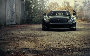 Wallpaper Porsche, Porsche, porsche, bird, Carrera GT, car